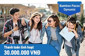 Bamboo Pass - Dynamic - hạn mức 30,000,000 VNĐ